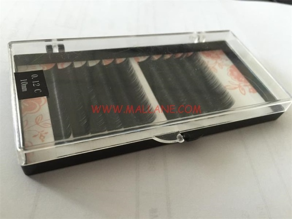 Black Color Tray P09