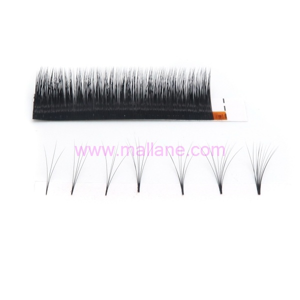 One Second Fanned Lash Extensions 01