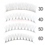 Short Stem Bottom Tape 3D 4D 5D 6D Fan Volume Lash Extensions